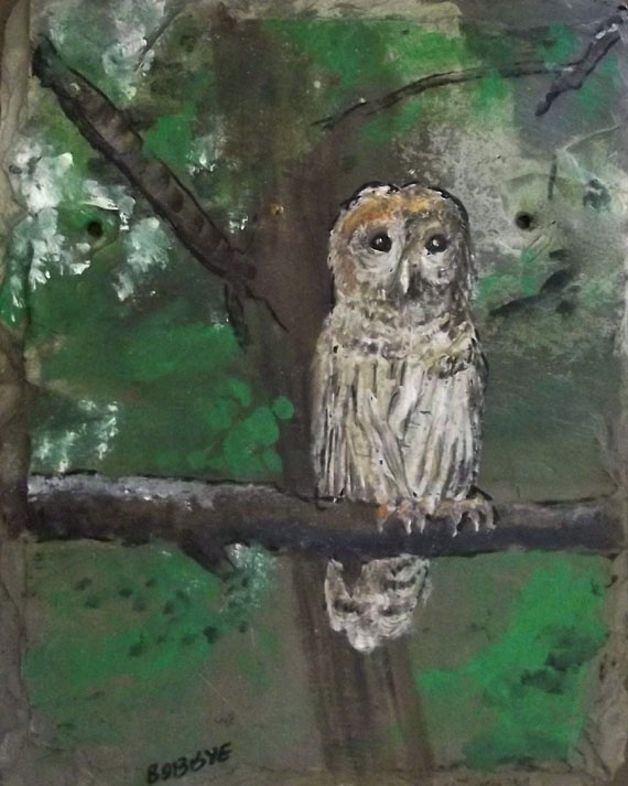 Pic2. Owl in tree branch